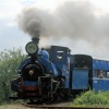 Trip 455 Beeches Light Railway